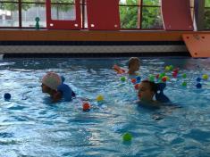 Plavání Poděbrady